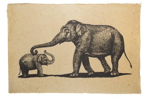 Kunst-Druck Elefanten (natur)